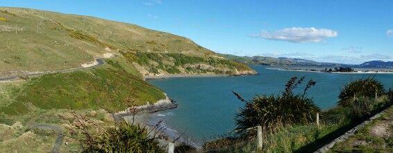 Portabello Dunedin NZ