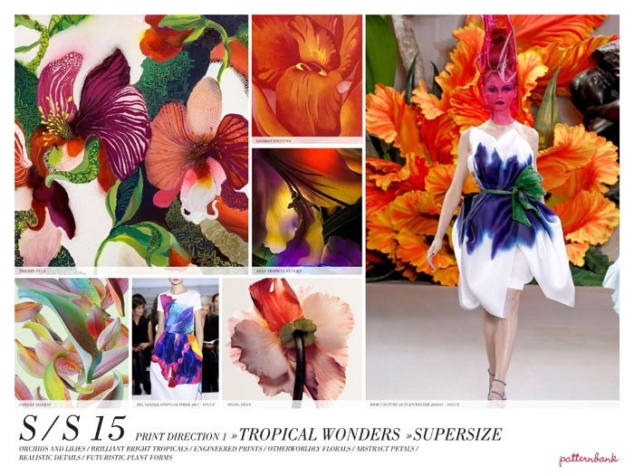 Spring/Summer 2015 Print Trend Report Part 2 PDF Download trend forecasts