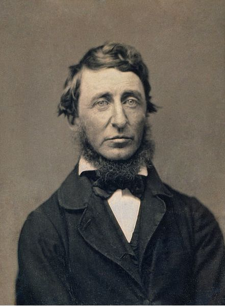henry david thoreau the natural history essays Henry david thoreau the natural history of man the text above reflects the 1906 houghton mifflin edition printing of the essay and has been.