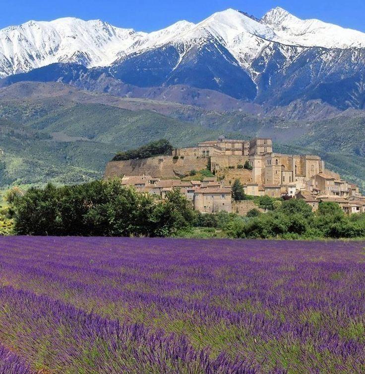 Provence  Visitar a #Provence já é desejo de muitos viajantes e é de certo um destino encantador. Mas você já pensou em visitá-la de #bike ? Pois prepare-se para uma viagem inesquecível...onde você poderá pedalar por vinhedos pomares de cerejas perfumados campos de #lavanda e muito mais. Visitar mercados de agricultores em aldeias locais poder desafiar-se na famosa subida do Tour de France: o monte Ventoux. Tudo isso regado a deliciosos #vinhos locais os melhores #azeites do mundo e as…
