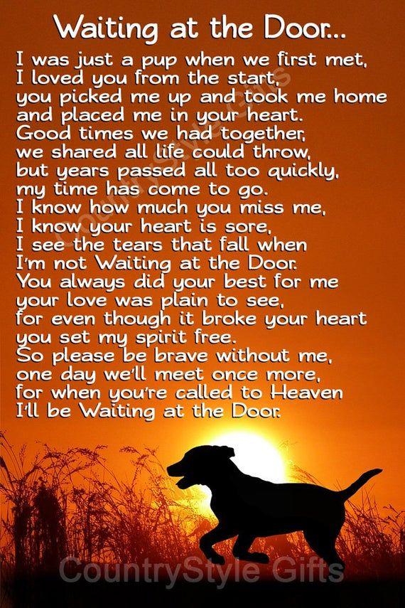 Pet Dog Memorial Waiting At The Door Rainbow Bridge Keepsake Etsy Dog Heaven Pet Quotes Dog Dog Heaven Quotes