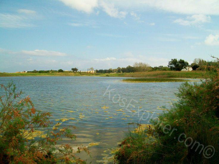 Psalidi wetlands, Kos, Greece! #kos #greece #sights #nature