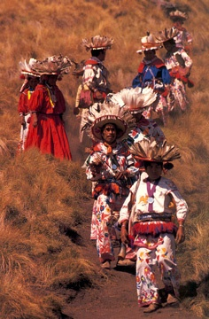 Huichol Pilgrimage...the Huichol are an indigenous people, found especially in Nayarit, Jalisco, Zacatecas, and  parts of Durango.