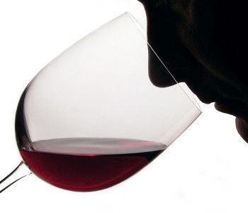 Moderate amounts of alcohol can improve your sense of smell!   #wine #wineeducation