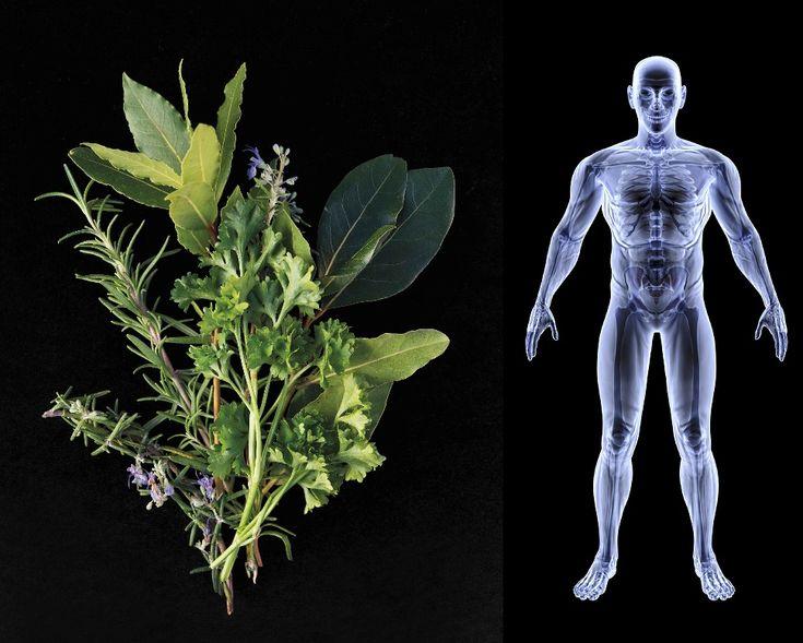 Různé nemoci a stavy - Bylinky pro všechny