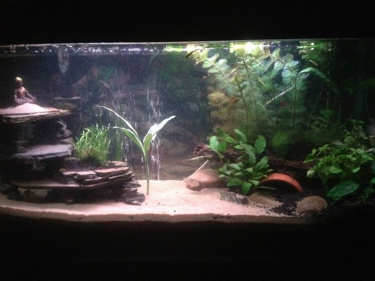 My DIY slate cave! - Aquarium Advice - Aquarium Forum Community