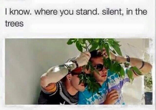 Lol, and that's where they are. Silent in the treees... l-/