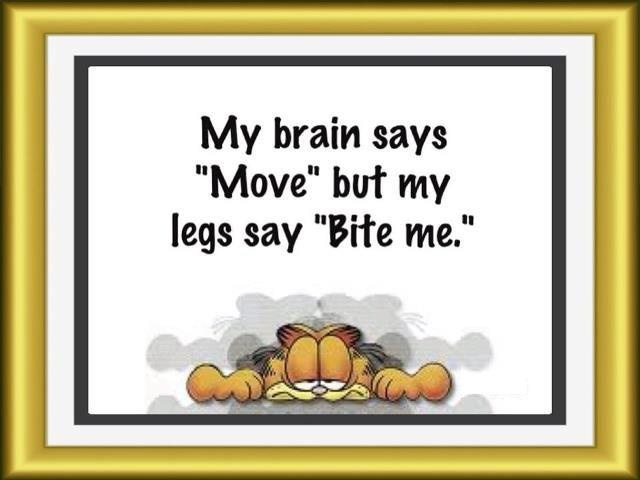 "My brain says ""move"" but my legs say ""bite me""... Aah the joys of a #spoonie.                                                                                                                                                      More"