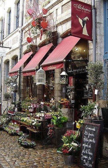 Alchimie Fleurs et Objets ~ 12 Rue Péterynck ~ 59800 Lille ~ France