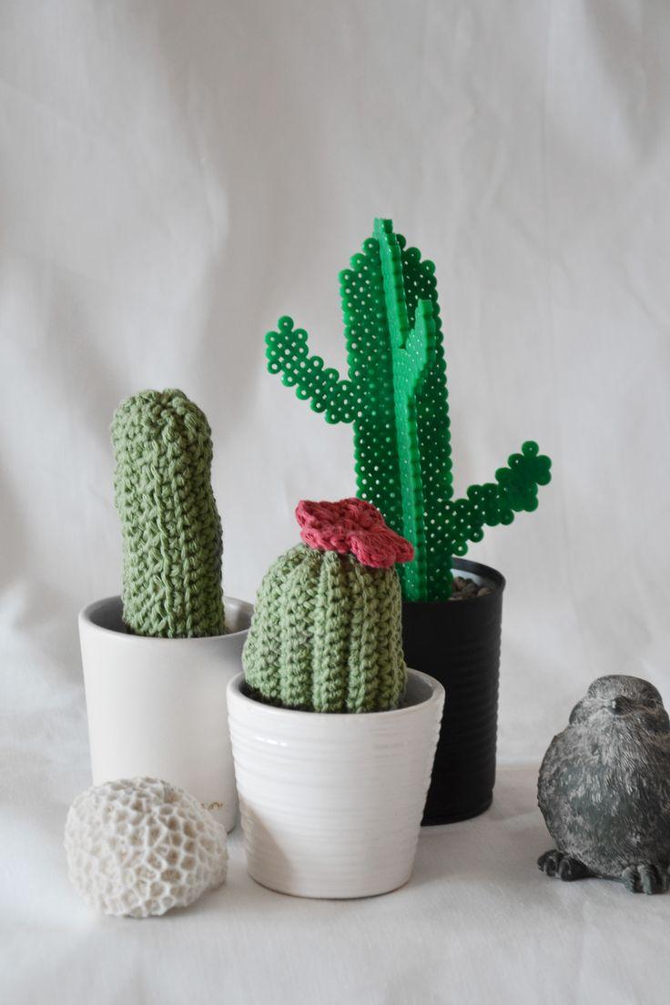 DIY Kaktus ~ Diagnos:Kreativ