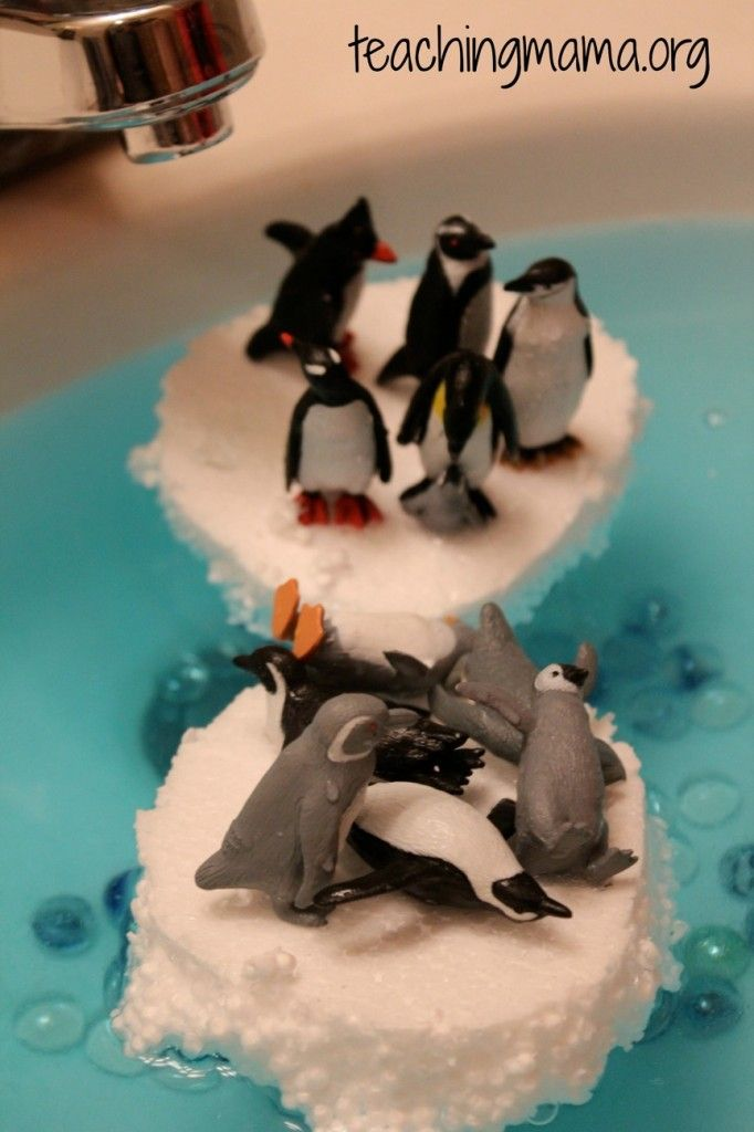Penguin Sensory Sink. cute could do after reading tacky the penguin