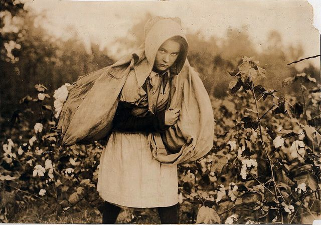 Callie Campbell, 11 years old, picks 75 to 125 pounds of cotton a day, and totes 50 pounds of it when sack gets full, 'No, I don't like it very much,' Oklahoma, by Lewis W. Hine 1916