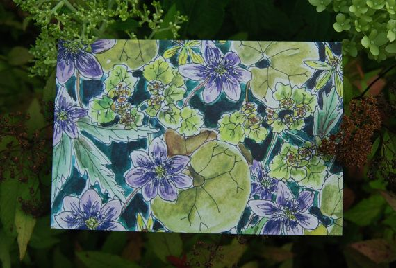 Greeting card-postcard Birthday card drawing by mydesignpictures