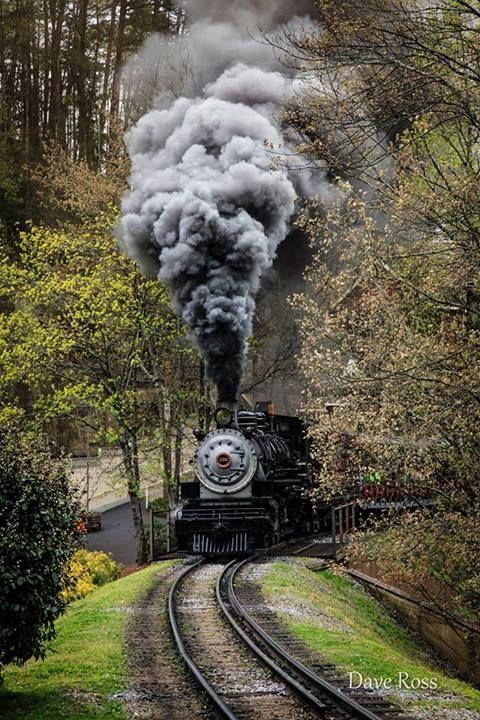 coisasdetere:  Trens - Foto: Dave Ross