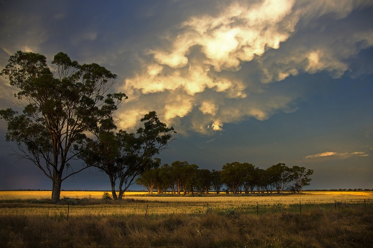 Sunset near Coonamble NSW