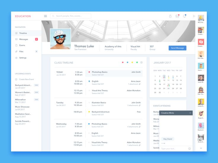 Student Profile UI Design – User interface by Živilė Žičkutė