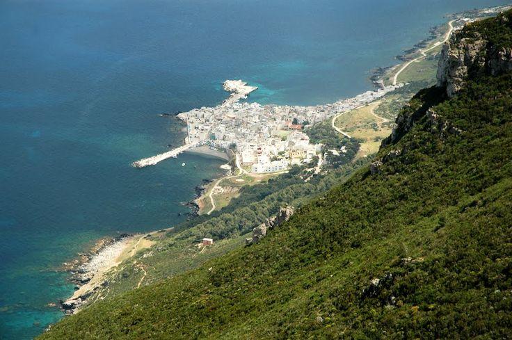 city Marettimo