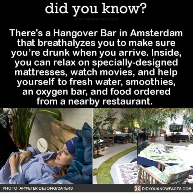 After party Hangover Bar #funny #interesting #hangover #bars #goingout Download our free App: [LINK IN BIO]