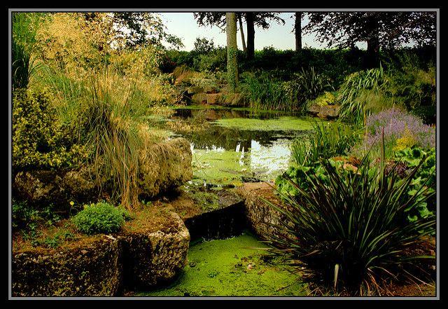 Skryté zahrady a jeskyně z Dewstow (2)