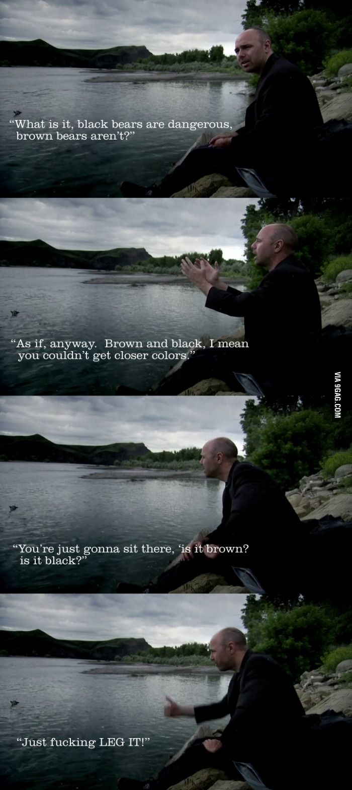 Karl Pilkington on bears.