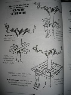 How to Build a Tree House in One Tree