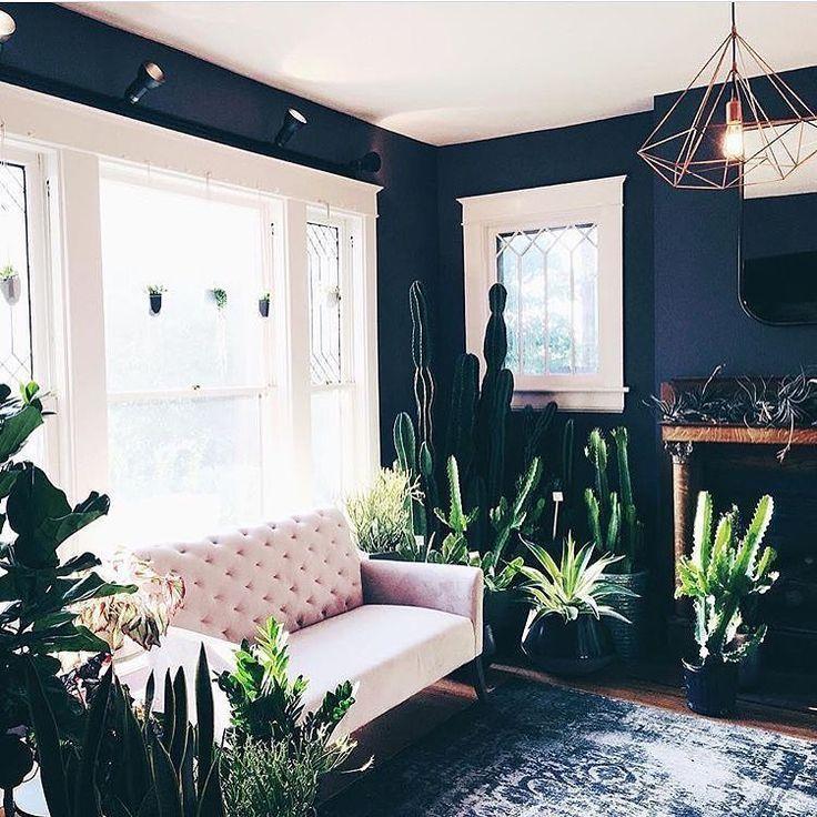 pink tufted sofa  cactus plants  interior living room. Best 20  Latest sofa set designs ideas on Pinterest   Living room