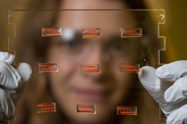 Vasos sanguíneos artificiales fabricados mediante impresión 3D para trasplantes
