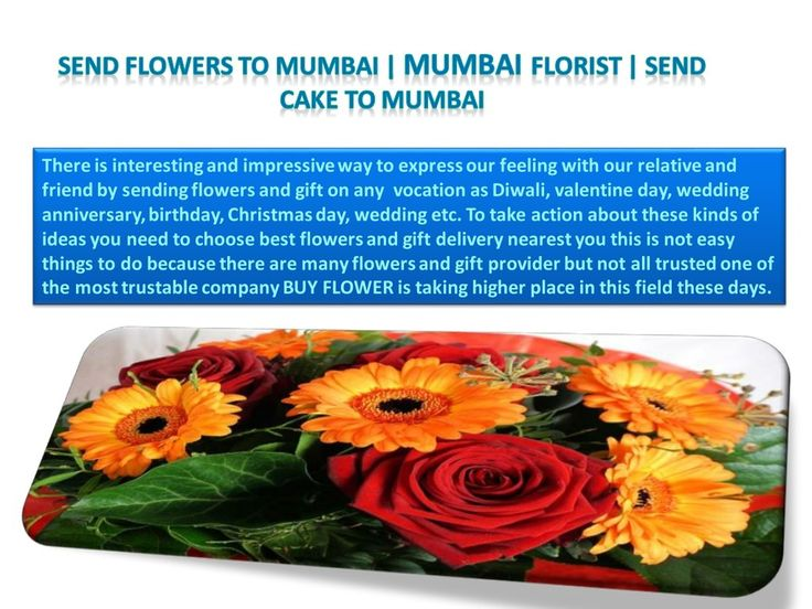You can get our services of online florist in Jammu also which is most popular city of India in the field of tour and we can send flowers to Jammu using florist in Jammu or you can buy online flowers and gift as well as cakes also so try our services to take benefit of our company.
