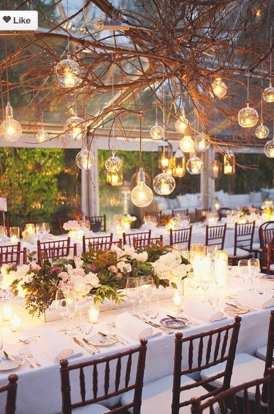 I absolutely love these wild branches with hanging bulb lights! Fairy Tale Wedding