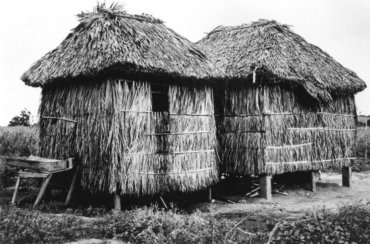 essay on architecture primitive hut Essay on architecture primitive hut i know this was posted a while ago, but i relate to so much of what you and justplainsomething said (though.