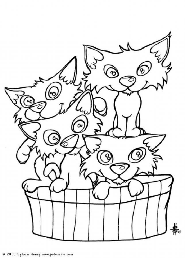 103 best Pets Coloring Pages images on Pinterest | Animal coloring ...