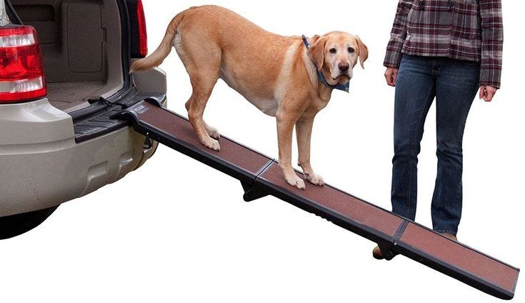 Pet TriFold Ramp Pet Gear Dog Carrier Dog Crate Stroller Ladder Stairs Travel  #Pet
