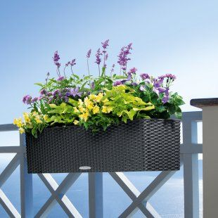 Railing plant box - Rectangle Lechuza Balconera Cottage Self-Watering Resin Planter with Optional Brackets