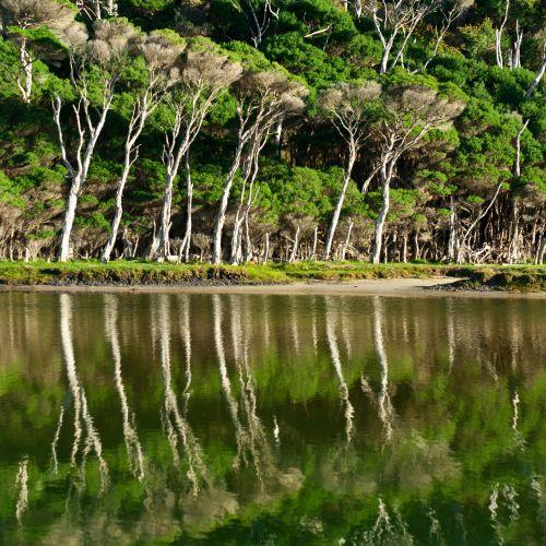 Wilsons Promontory National Park, Tidal River, VIC