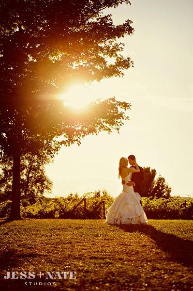 87 best ciccone vineyard amp winery weddings images on