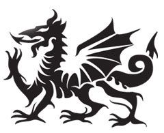 Celtic Dragon - Actually Welsh - I think it would translate well to fabric application.