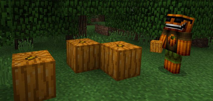 It offers a good opportunity for you to discover the realistic pumpkins in Uncarved Pumpkin Texture Pack. One fact is that you hardly see pumpkins in your real world. The pumpkin makes impressive by the pretty look. However, it is sometimes a challenge for special builds. Founded by:... http://mcpebox.com/uncarved-pumpkin-texture-pack-minecraft-pe/