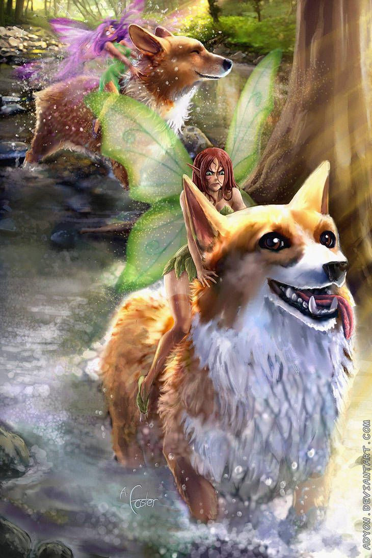 Corgi Fairy Legend The Problem With Corgi Mounts By Adyon Corgi Art Corgi Corgi Dog