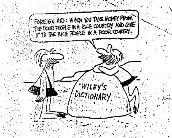 foreign-aid-definition-wiley.jpg (598×480)