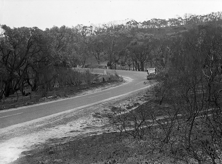 1947 Great Ocean Road, Anglesea, after bush fire. VicRoads Centenary 1913-2013. www.vicroads.vic.gov.au/centenary