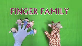 Finger Family Nursery Rhyme - Finger Family Cartoon Toy Puppet Animation Rhymes songs For Kids