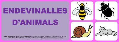 La Caseta, un lloc especial: Endevinalles d'animals