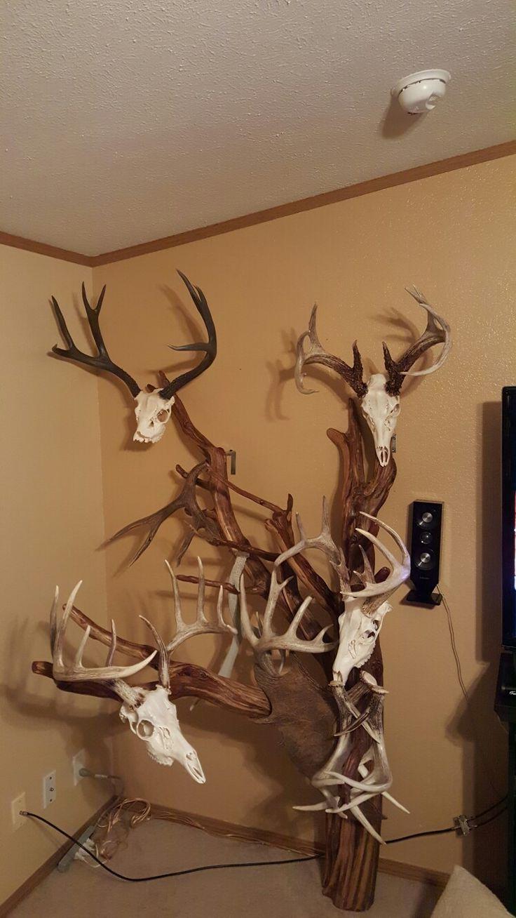 Cedar tree showcasing deer skull mounts