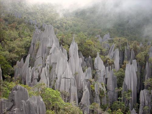#Daydream:Gunung Mulu National Park