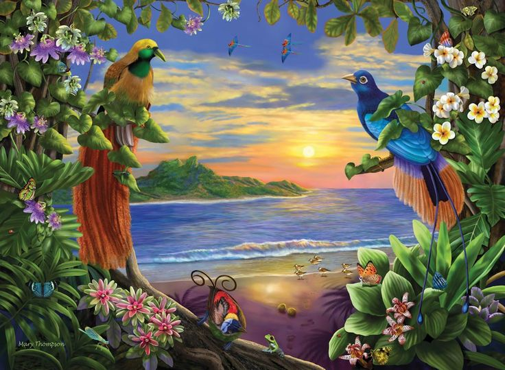 Paradise 4