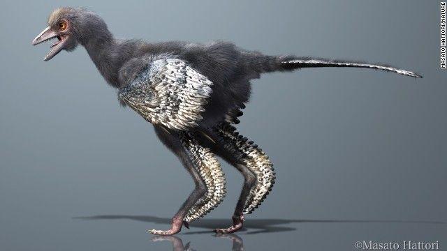中国で新種の恐竜発見、鳥類の祖先か 2013.05.30 Thu posted at 11:26 JST