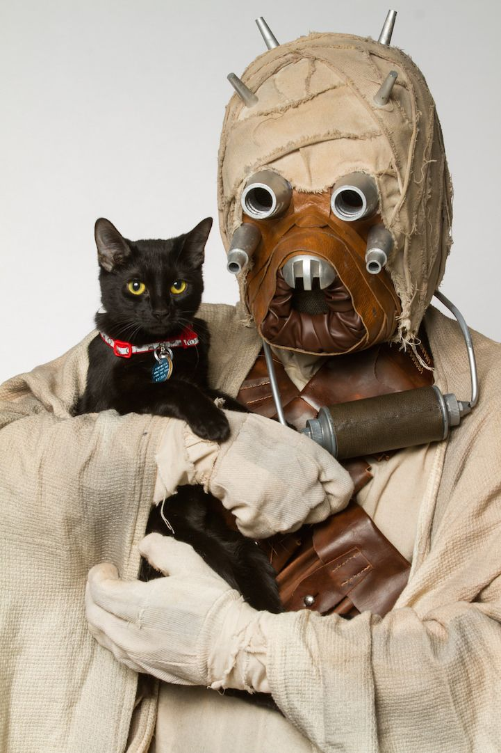 Star Wars cosplayers pose with adorable shelter animals to promote adoption. #cosplay #StarWars