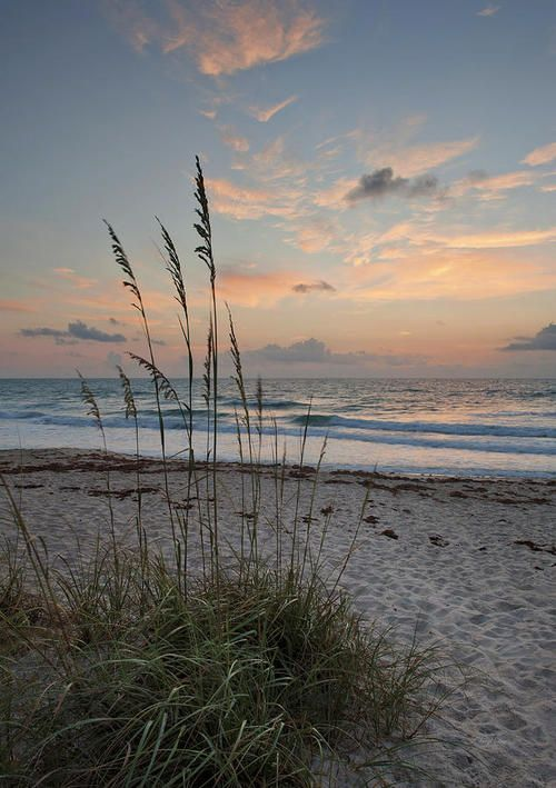 (via Melbourne Beach Sunrise Photograph by Cheryl Davis - Melbourne Beach Sunrise Fine Art Prints and Posters for Sale)