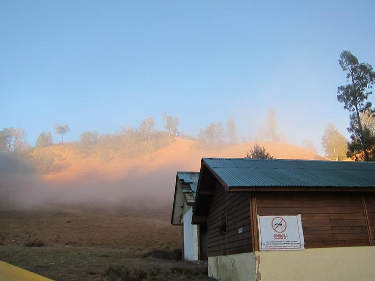 The Camper Shack and The Mist
