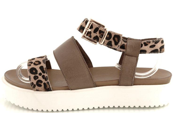 http://zebra-buty.pl/model/5759-sandaly-inuovo-5297-leopard-darkbrown-2051-085